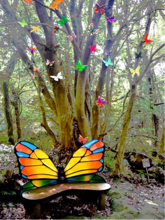 butterfly-garden